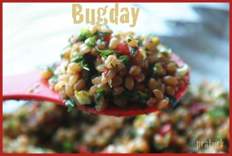 bugday_salatasi_praturk_002